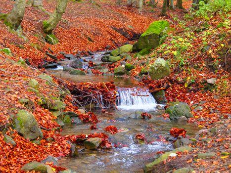 Photo free autumn, brook, waterfall