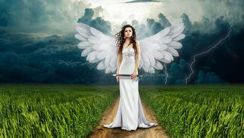 Заставки ангел,девушка,поле,дорога,фантазия,магический,рай