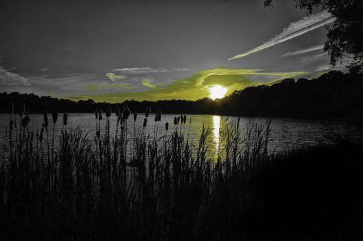 Фото бесплатно ночь, пейзаж, силуэты