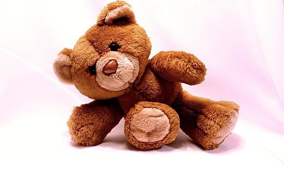 Photo free plush, soft, teddy bear