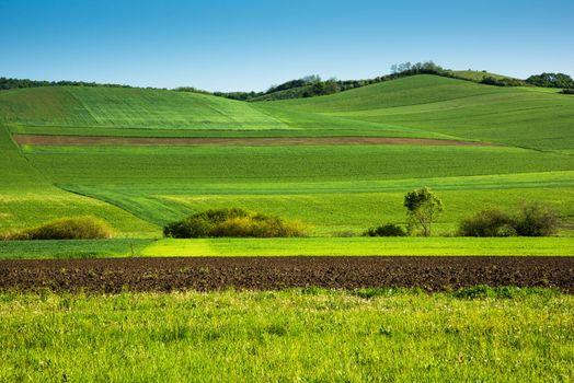 Заставка поле, холмы на андроид
