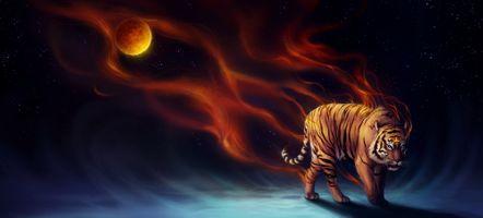 Фото бесплатно тигр, цифровое искусство, животные