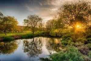 Фото бесплатно закат, озеро, деревья