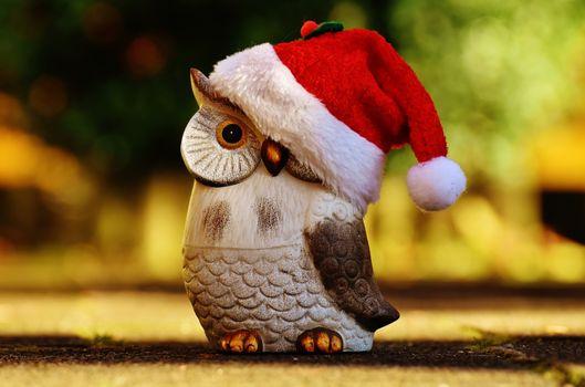 Photo free figure, christmas, santa owl