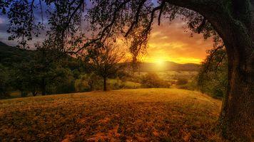 Бесплатные фото закат солнца, поле, холмы, деревья, пейзаж
