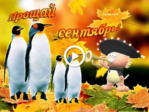 Postcard free penguins, happy last day of september, last day of september