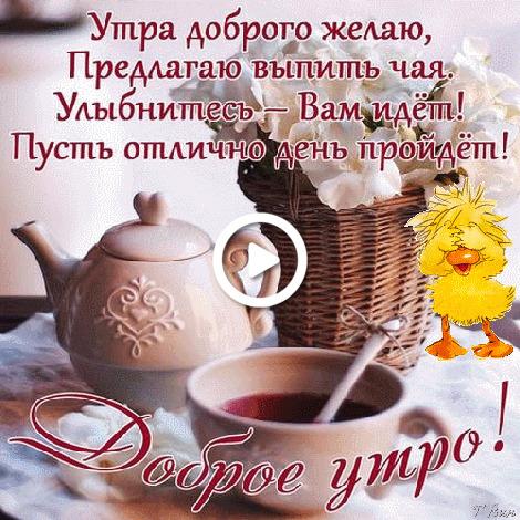 Postcard free morning wish, moods, tea