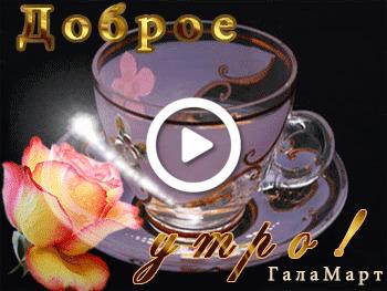 Postcard free good morning cards galina, good morning, a cup