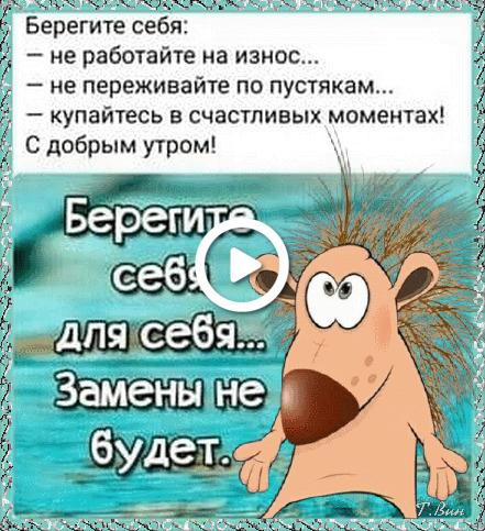Postcard free monday, beaver, postcard