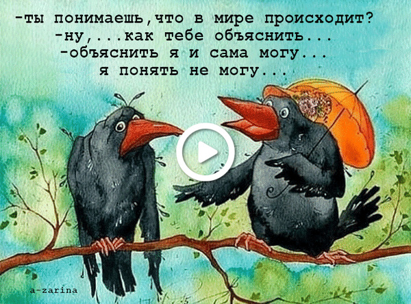 Postcard free crow, quote, animation