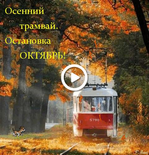 Postcard free october, postcard, autumn