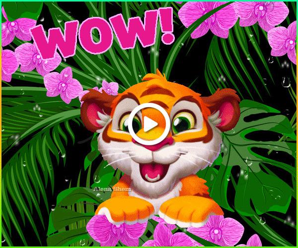 Postcard free tiger cub, original animation, alena shem
