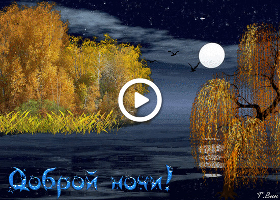 Postcard free evening wish, postcards good night with nature, good night nature twinkle cards