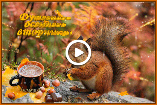 Postcard free leaf fall, squirrel, nakes