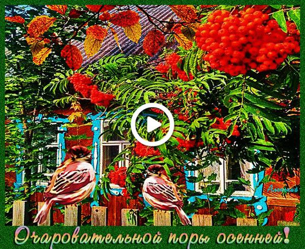 Postcard free birds, autumn, animation