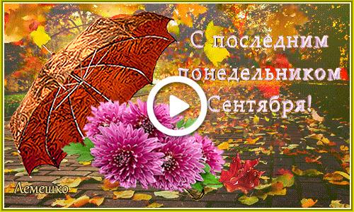 Postcard free leaf fall, autumn park, umbrella