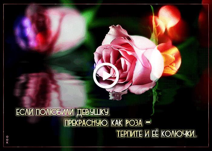 Postcard free creative with inscription, rose, tex