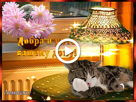 Postcard free warmth and comfort for your home, postcards of warmth and comfort for your home, cats