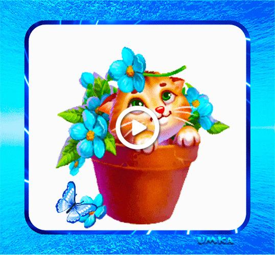 Postcard free joy, kitten, flowers
