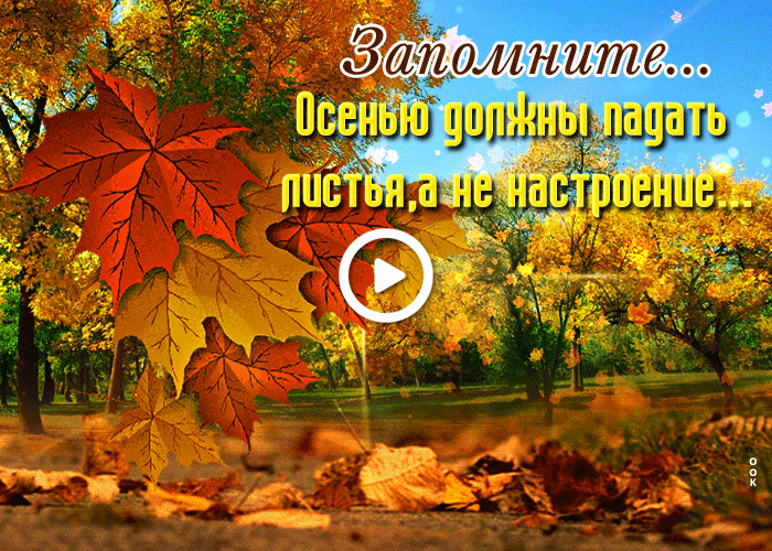 Postcard free a fantastic one about the beginning of fall, leaf fall, park