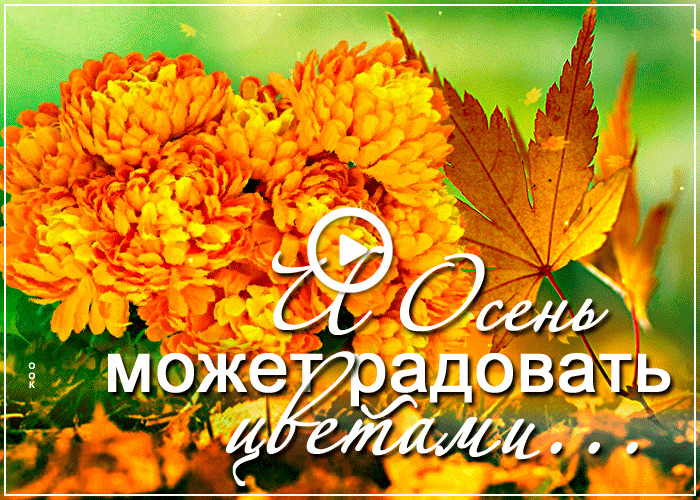 Postcard free autumn can be a joy to behold in color, flowers, leaves