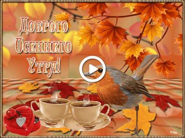 Postcard free morning, autumn, tea