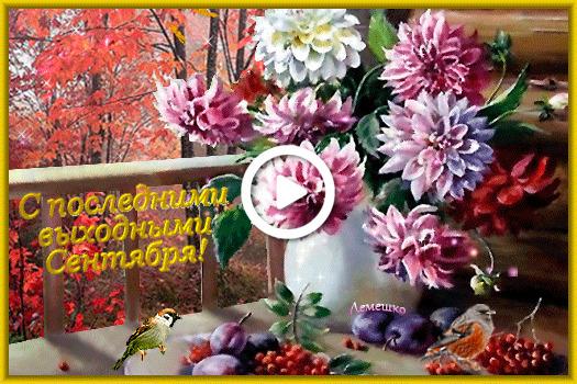 Postcard free leaf fall, vase, drain