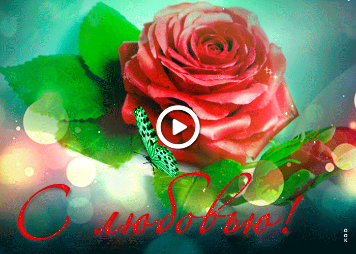 Postcard free beautiful with love to you, rose, butterfly