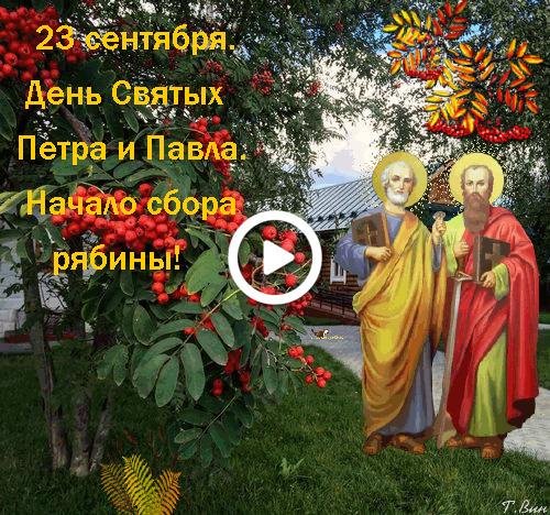 Postcard free peter and pavel ryabinniki, inscription, trees