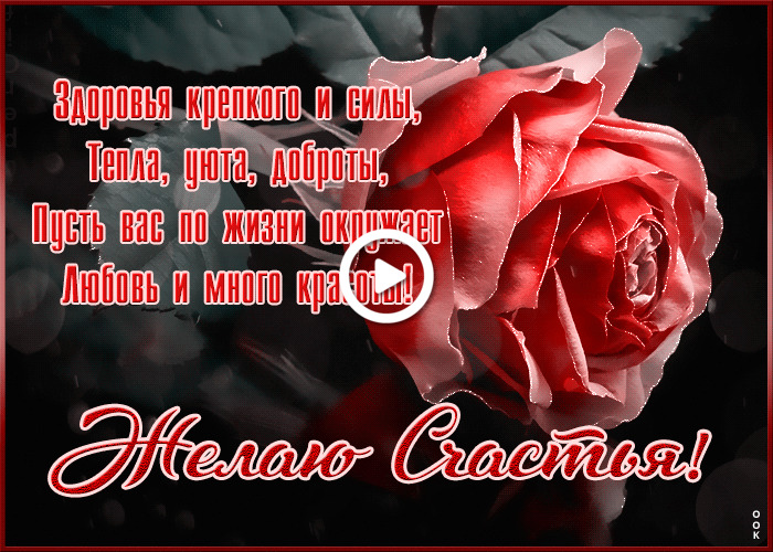 Postcard free I wish you happiness with a rose, red rose, rosebud