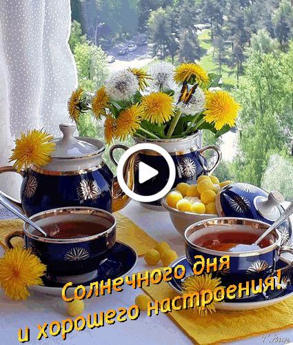 Postcard free morning wish, good morning, good morning have a nice day