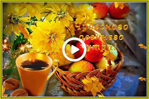 Postcard free basket, apples, coffee cup