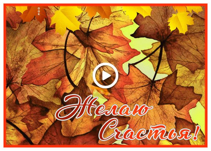 Postcard free super wish you happiness, autumn, leaf fall