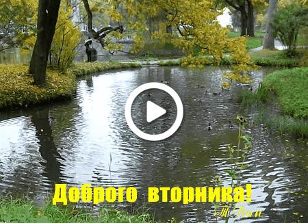 Postcard free autumn, good fall tuesday, flowers