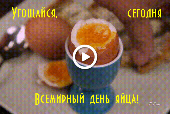 Postcard free world egg day, holidays, postcard