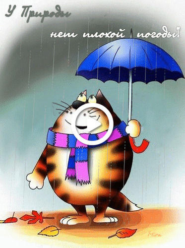Postcard free umbrella, rain, animation