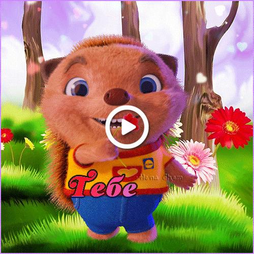 Postcard free hedgehog, flower, original animation