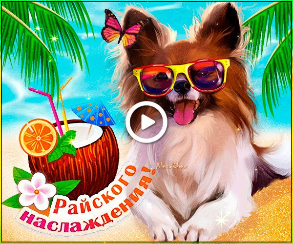 Postcard free summer, vacation, sea