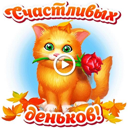 Postcard free autumn, red cat, rose