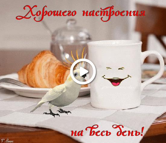 Postcard free morning wish, postcard, cup