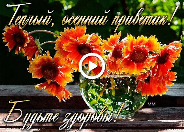 Postcard free sunflowers, autumn, animation