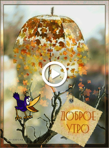 Postcard free autumn, good morning, animation