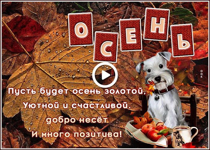 Postcard free i wish you a beautiful autumn., dog, leaves