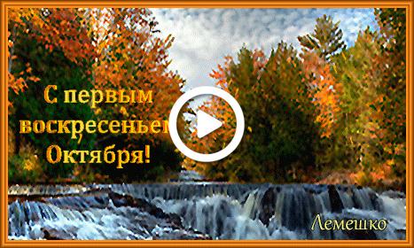 Postcard free autumn forest, waterfall, leaf fall