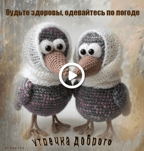 Postcard free crow, autumn, good morning