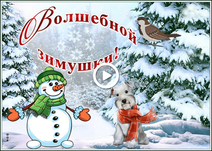 Postcard free have a wonderful winter, a magical winter, birdie