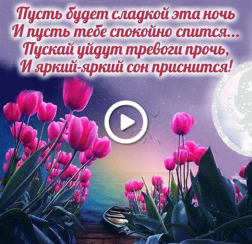 Postcard free good night, flowers, tulips