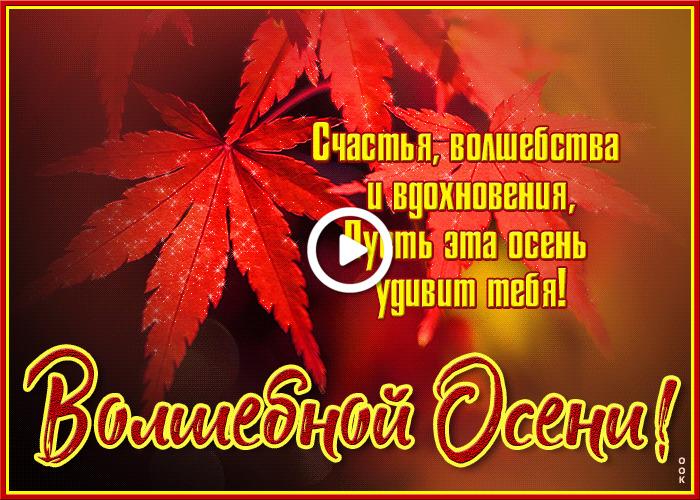 Postcard free of magical autumn, leaves, inscription