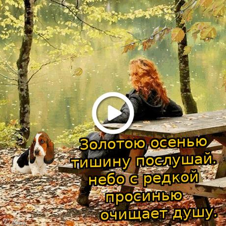 Postcard free autumn day wish, moods, a dog