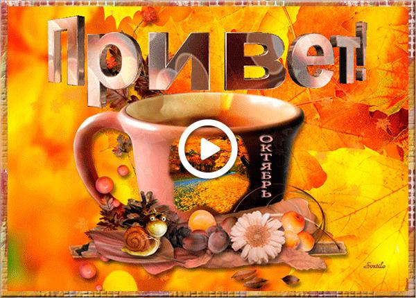 Postcard free cup, coffee, leaves